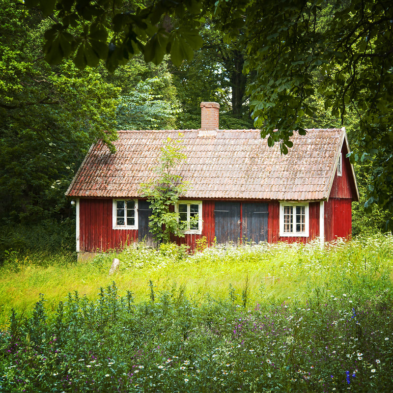 Sweet little swedish cottage in a summer field