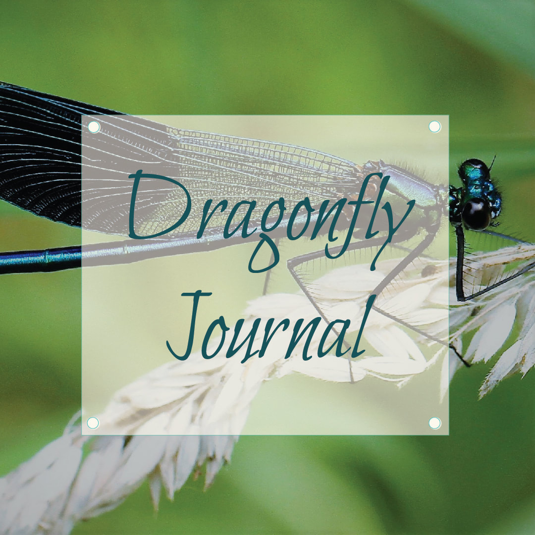 Dragonfly Journal Blog